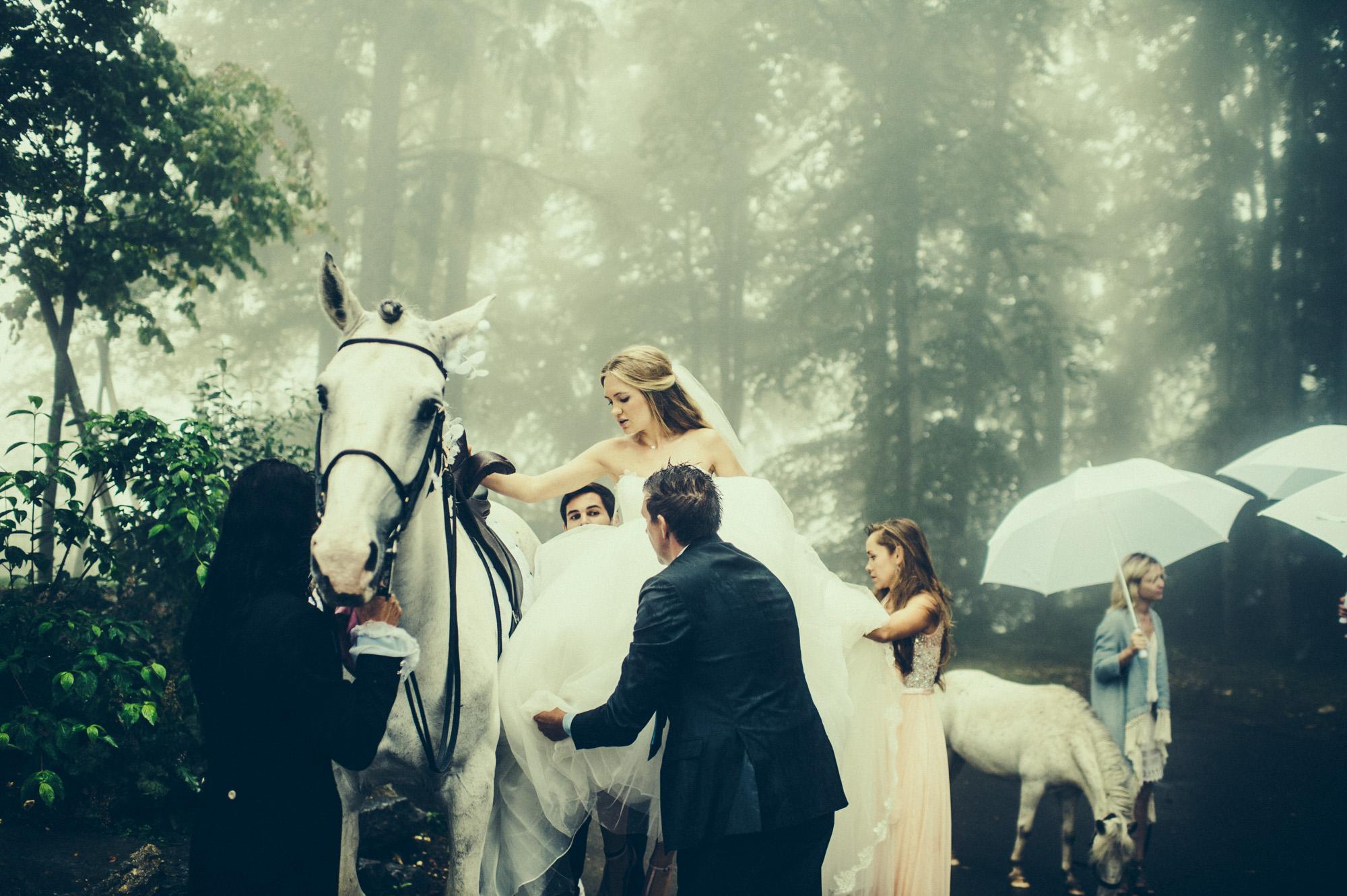 bride white horse