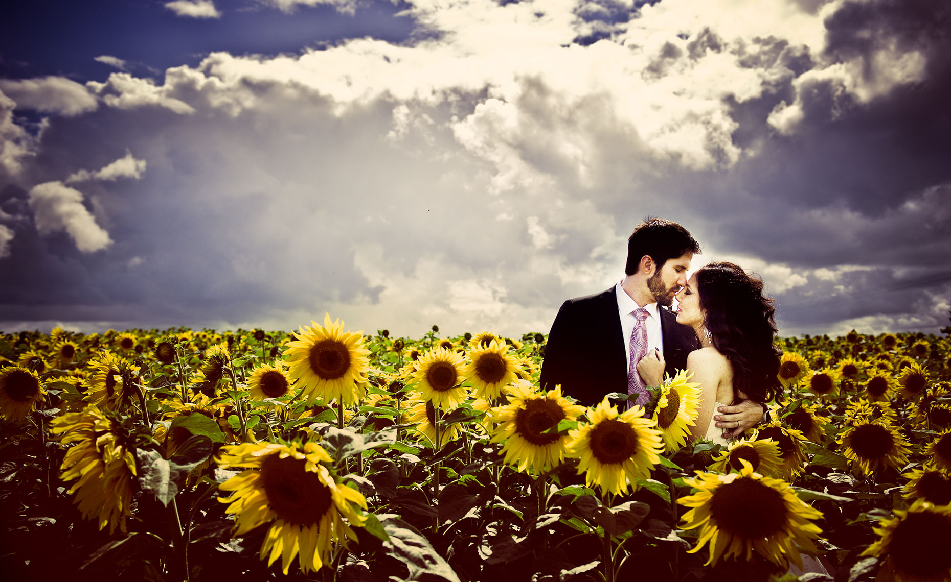 sunflower field wedding