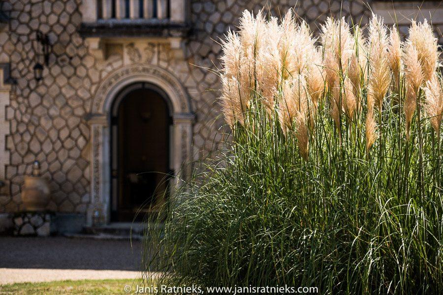 Chateau de la courone front garden