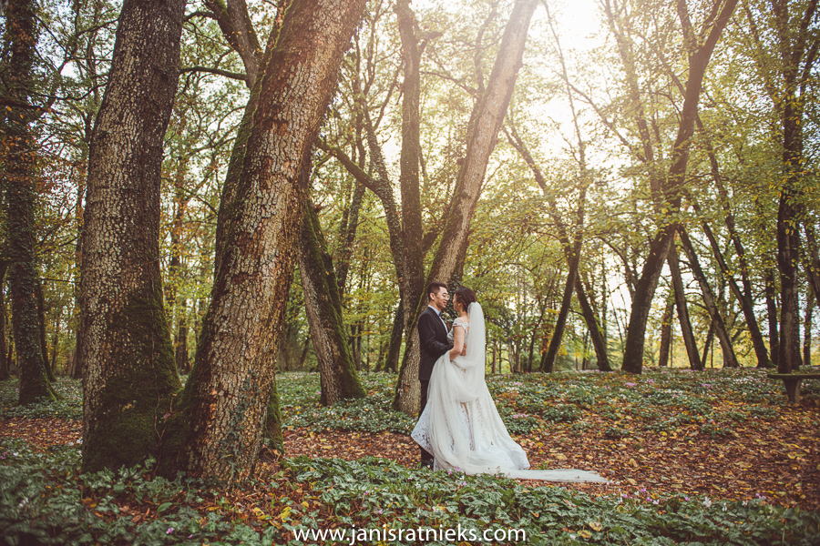 bride and groom in a beautiful forest