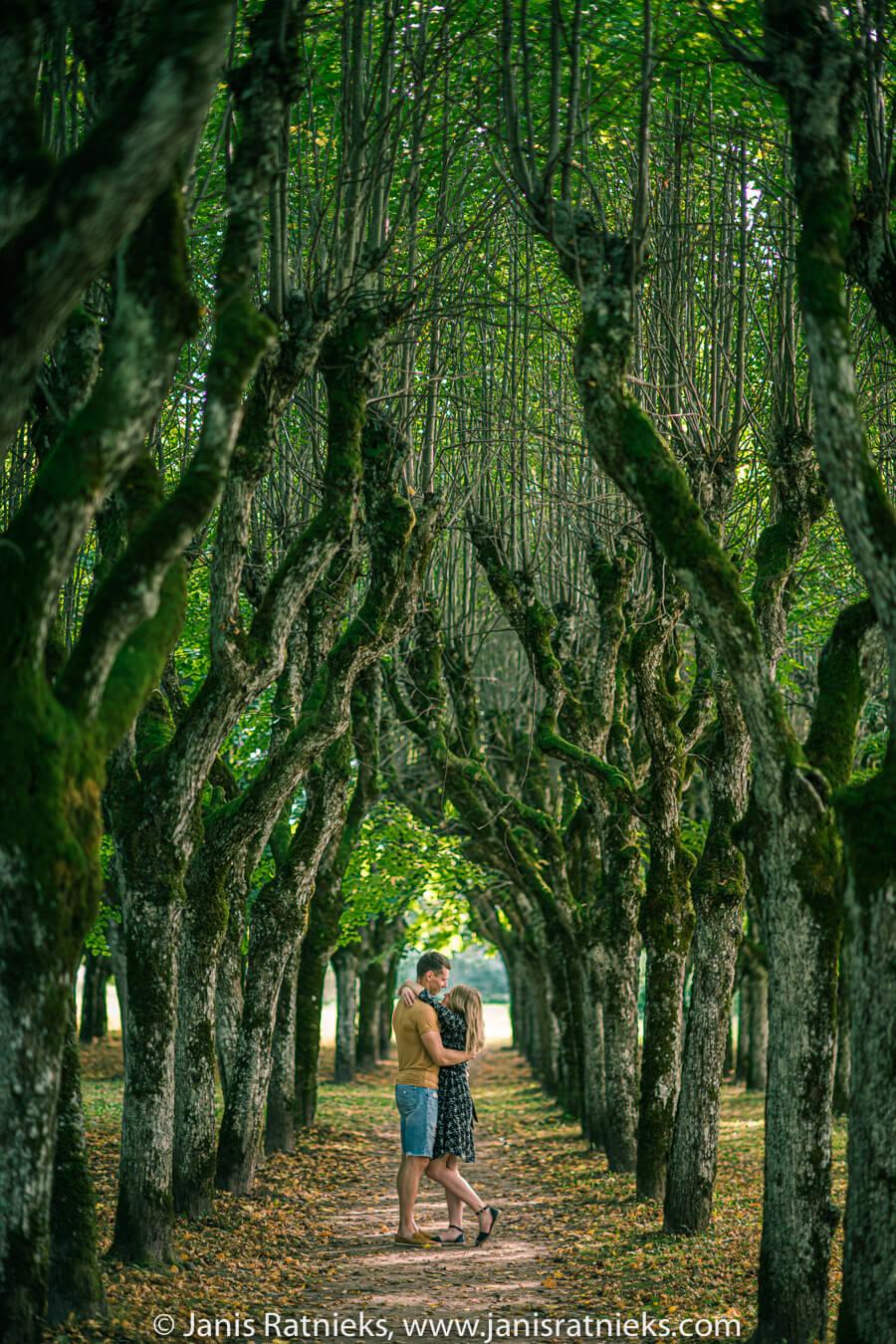 pre wedding photos park